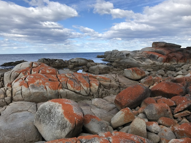 bay of fires, travel, tasmania, ocean