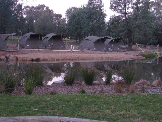 Billabong Camp Western Plains Zoo