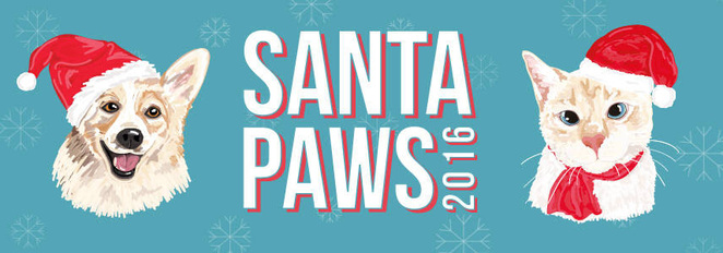 christmas markets, markets, rspca, animal shelter, animal rescue, charity, christmas, dog friendly, santa, photo with santa, dog treats, dog gifts, springwood, southern suburbs, world for pets, christmas, holiday, festive spirit