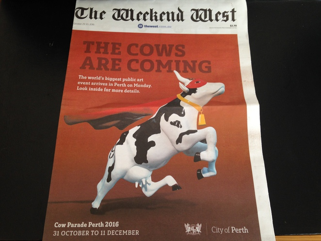 cow parade perth, perth city, things to do in november, cheese festival, festival fromage
