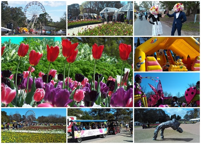 floriade, canberra, tips for travellers, where to go, what to do, ACT, tourist attractions,