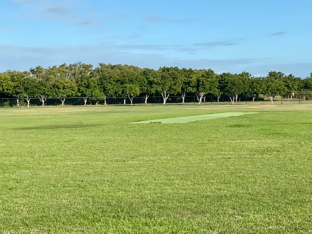 This huge playing field area with cricket pitch is ideal for burning off the kids' energy