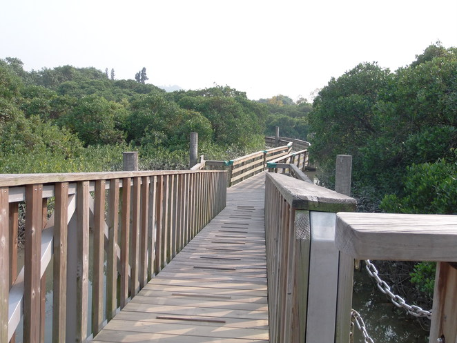 HK wetland park floating bridge