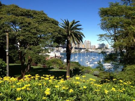 Lavender Bay Parklands