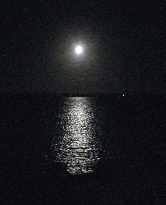 Moonlight reflected on the waters of Moreton Bay