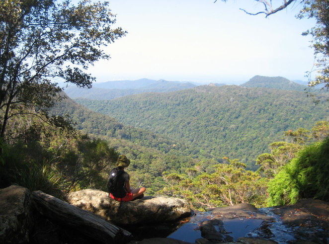 View from the cliff tops of Springbrook National Park