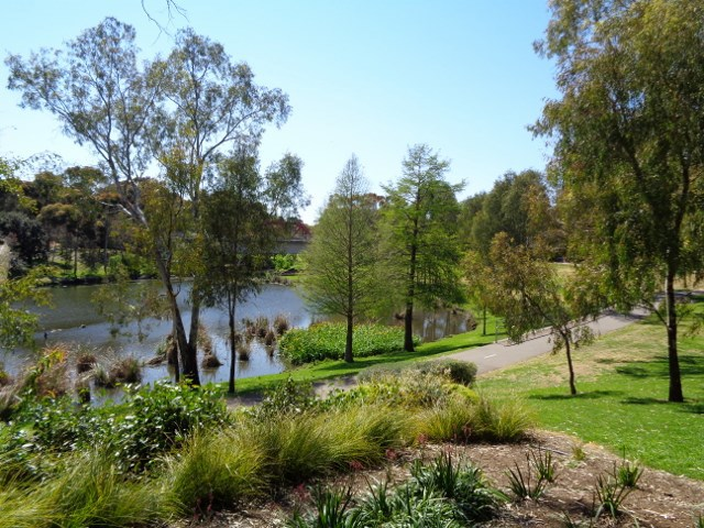 Torrens River, Linear Park, Adelaide
