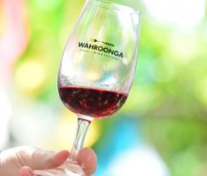 wahroonga food and wine festival 2014, wahroonga festival, food and wine, taste orange