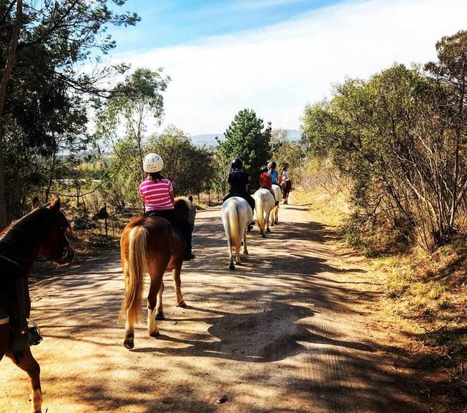 forest park riding school, canberra, ACT, stromlo, horse riding, school holidays, activities, horses, kids, children, july, 2018,