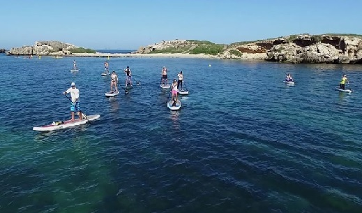 paddle boarding, summer, water sports, beach, sea water,