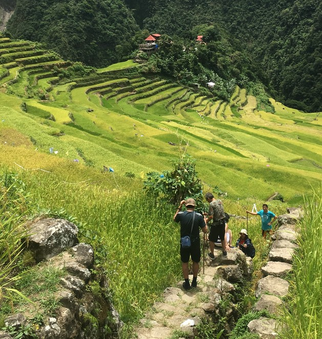Rice terraces Philippines