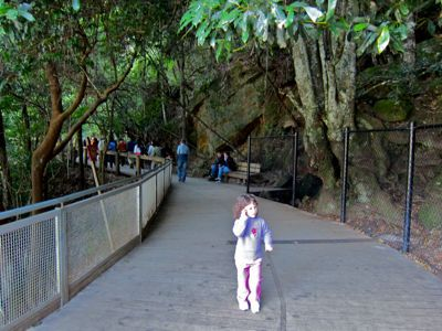 Scenic World platform walk, Katoomba