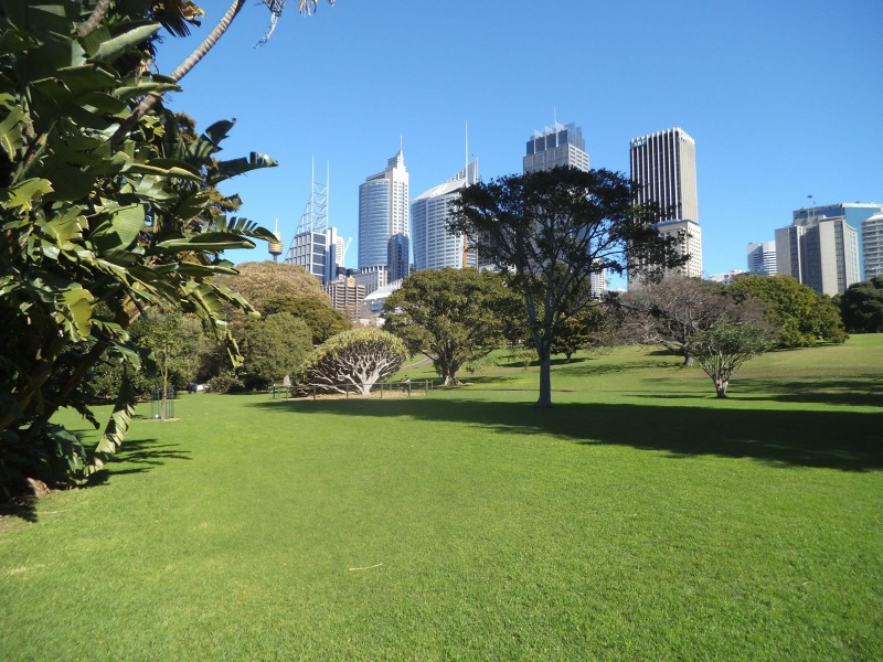 The Royal Botanic Gardens. Large Image