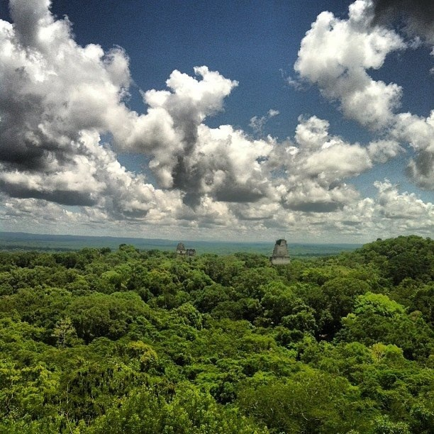 The view from temple IV Tikal