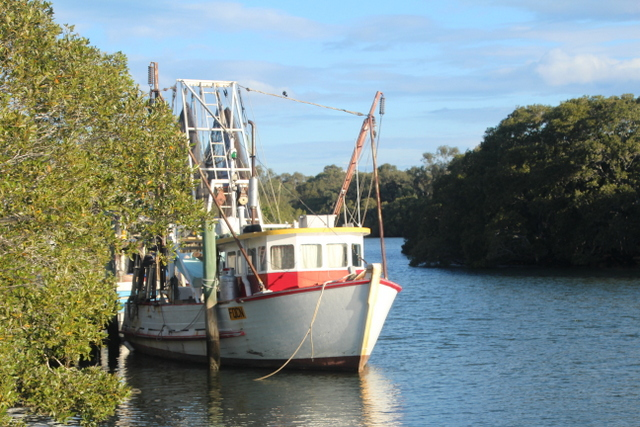trawlers, Cabbage Tree Creek