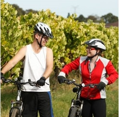bike in the valley, bike riding events, cycling events, cycling perth, swan valley events, swan valley cycling, swan valley bike riding, perth autumn festival