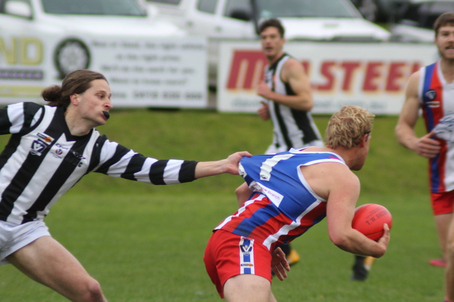 dalyston recreation reserve football and netball club magpies