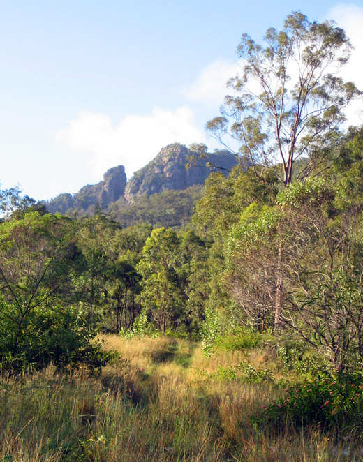 Flinders peak seen from the lower part of the hiking track