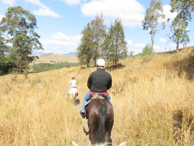 Gloucester, Horse-riding, Barrington Tops, NSW