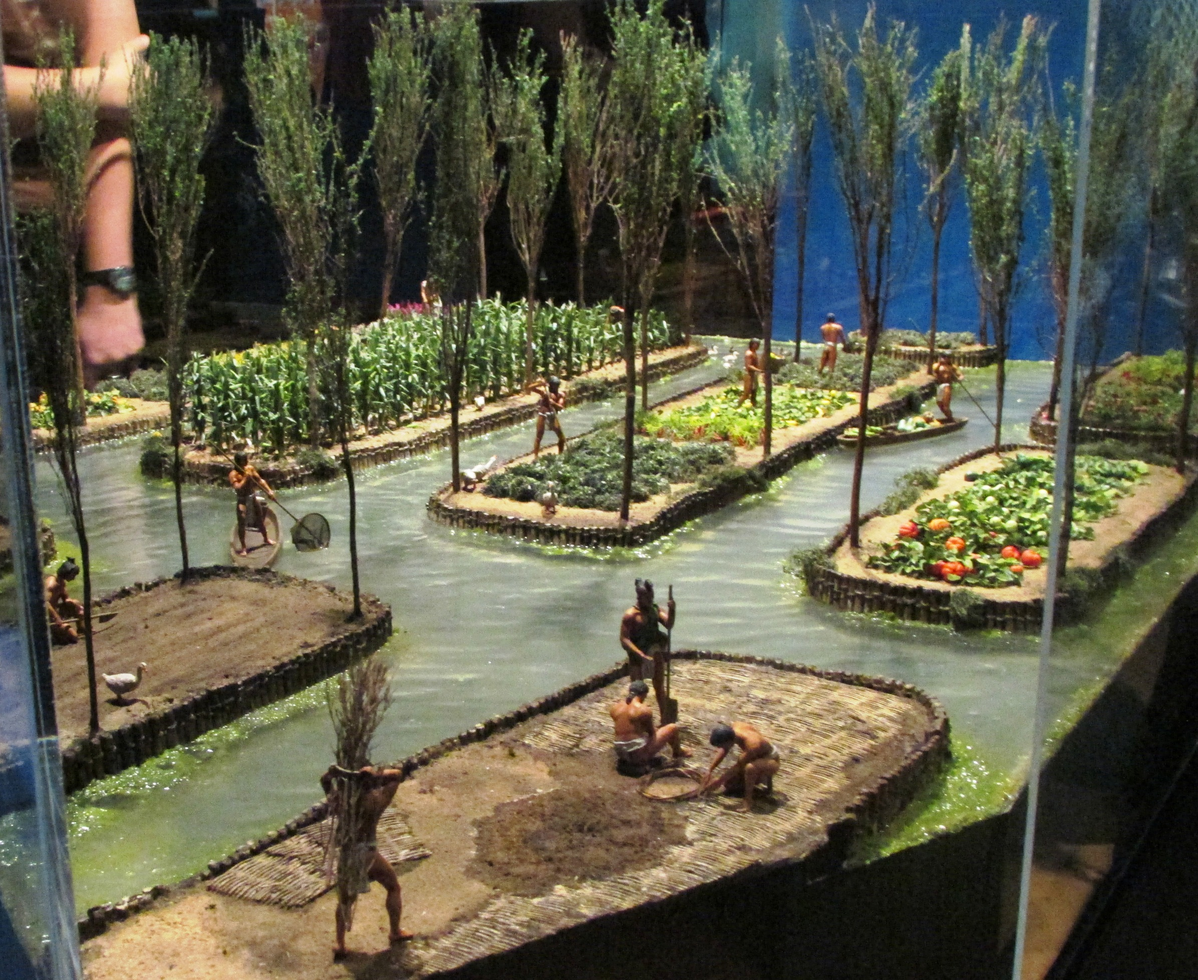 Aztec Chinamps Floating Gardens