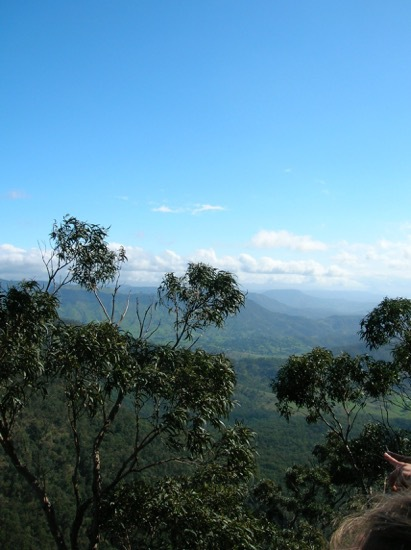 Lamington National Park, Lamington National Park Centenary, O'Reilly stories, about Lamington National Park, Gold Coast attractions, things to see and do Gold Coast, places to go Gold Coast, Miracle of the Mountain, O'Reilly's Rainforest Retreat, Stinson Rescue
