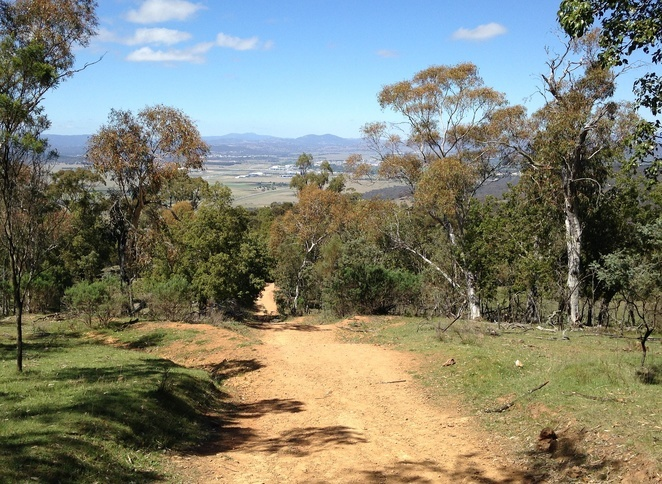 mount majura, canberra, wlaking trails, what to do in majura, ACT, wlaking trails, walking paths, uphill walks, trails, mountains in canberra,