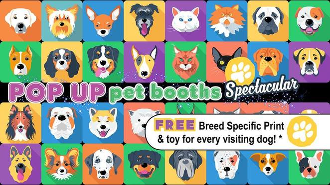 perforce birthday spectacular strathpine, strathpine, the canine studio, dog event, Brisbane, Northside, northern suburbs, dog event, free entry, free gift, goodie bag, storewide discounts, print, free toy, competition, award, dog competition, pop up booth