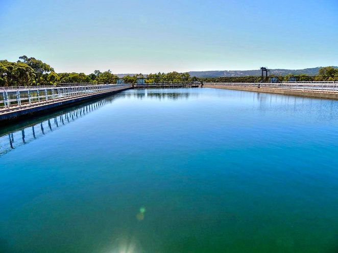 sa water, water treatment plant, free tours, happy valley, happy valley water treatment plant, water, treatment plant, happy valley reservoir, adelaide, sedimentation basin