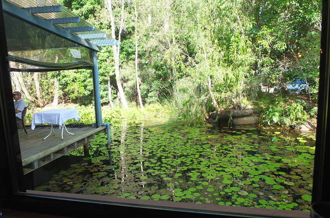 The Loose Goose Bar and Restaurant, Christmas Day Lunch venue, Twin Waters, north of Buderim, south of Noosa, European-influenced Australian cuisine, fresh local produce, vegetarian menu, air-conditioned dining, undercover outdoor dining, views over water garden, lunch and dinner, Wednesday to Sunday, Sticky Beak Lunch Special, functions, wedding venue, sophisticated ambience, excellent service, ample parking