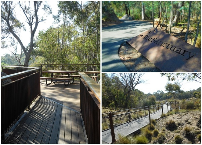 the sanctuary, tidbinbilla, canberra, walks, short walks, families, wheel chair accessible walks, boardwalks, wetlands, platypus, wildlife,