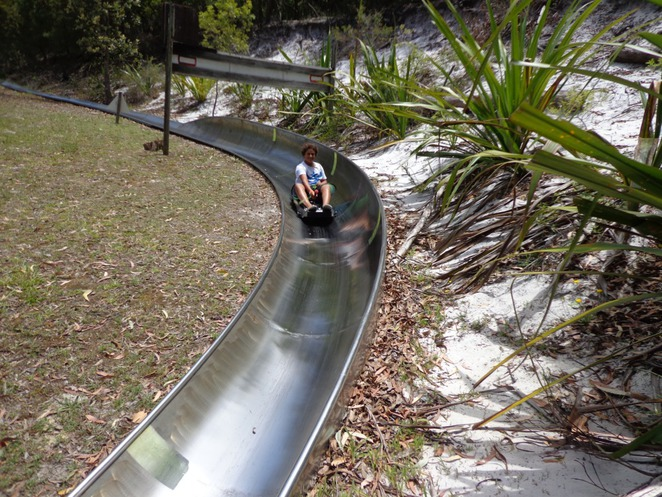 Toboggan Hill Park, Shoal Bay, Port Stephens, Nelson Bay
