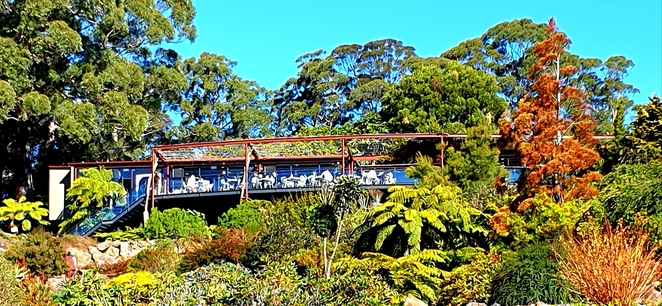 Views, Blue Mountains, dining, food, wine, lunch, breakfast, gardens, Mount Tomah, family