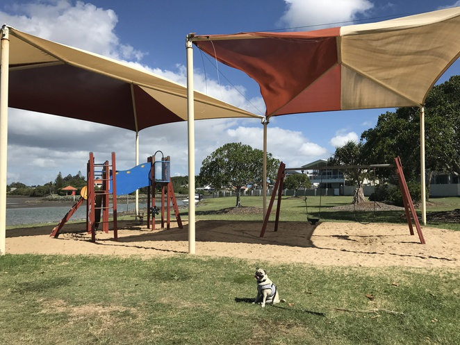 aquatic paradise park west, birkdale, moreton bay, cleveland, brisbane, bayside, off leash dog park, waterfront, picnic area, barbecue, dog friendly, nature, mangroves, boardwalk, free, eastern suburbs, southern suburbs, southside