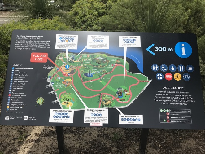 bike hire kings park, spinway bike hire, what to do in kings park, cycle round kings park, things to do in perth, perth bike maps, kings park map