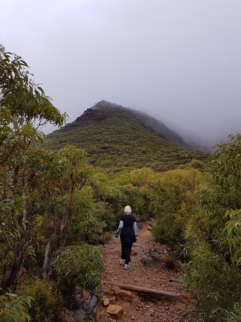Bluff Knoll, Hiking, fitness,nature,stirling ranges, Southwest, fun things to do, family activity, beginner hikers