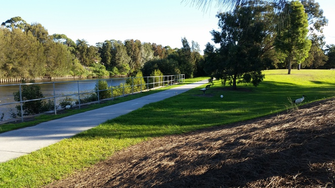 cooks river, free, picnic areas, inner west, sydney