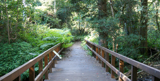 The Dalrymple Circuit has educational signs, boardwalks and benches