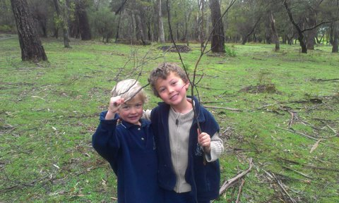 happy children nature halls gap bush hike