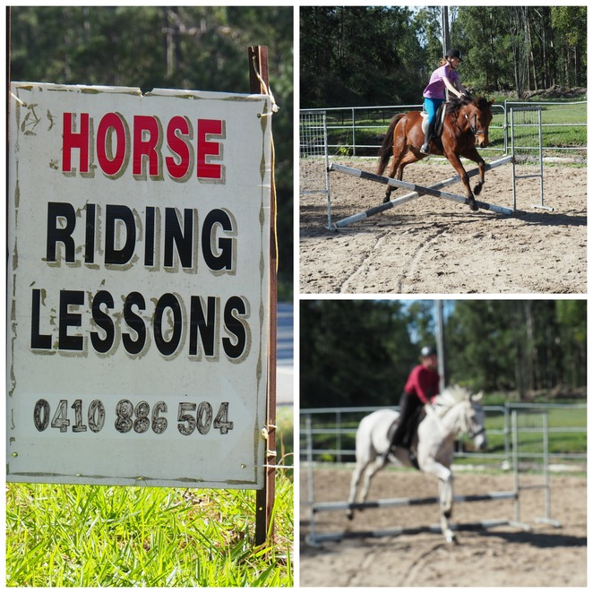 horse, riding, saddle club, lessons,