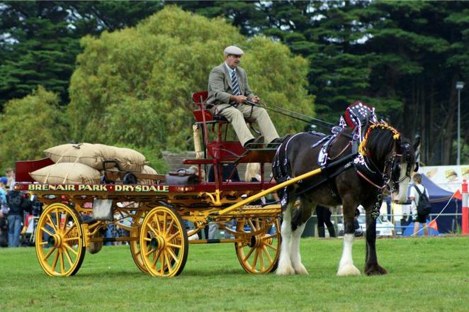 Red Hill Show, Easter School Holiday activities