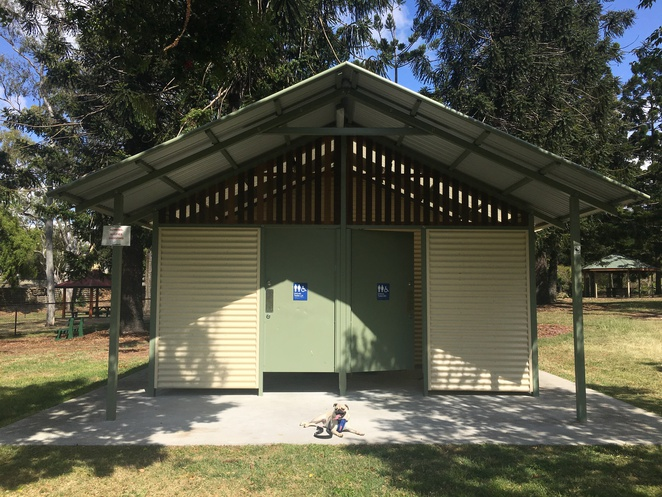 sedgley park, alderson st, newmarket pool, alderley, brisbane, northern suburbs, northside, newmarket, dog park, barbecue, park, picnic spot, children, dog friendly, free, fitness circuit, toilet, playground equipment, playground, wheelchair accessible, wheelchair friendly playground equipment