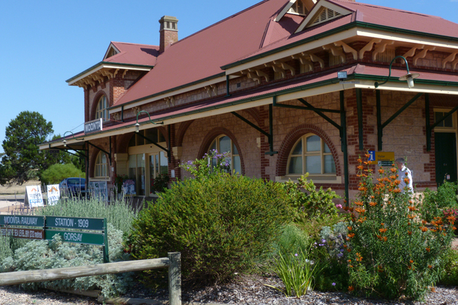 South Australian wildlife, South Australian tourism, Wildlife photography, Moonta, heritage railway station