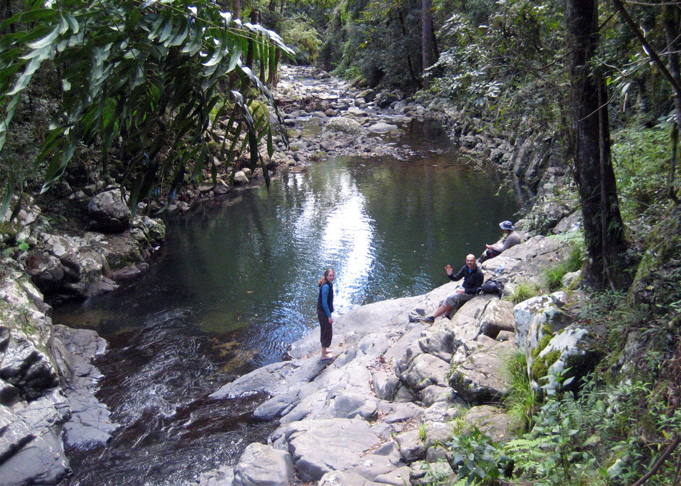 Gwongoorool Pool At Binna Burra Brisbane