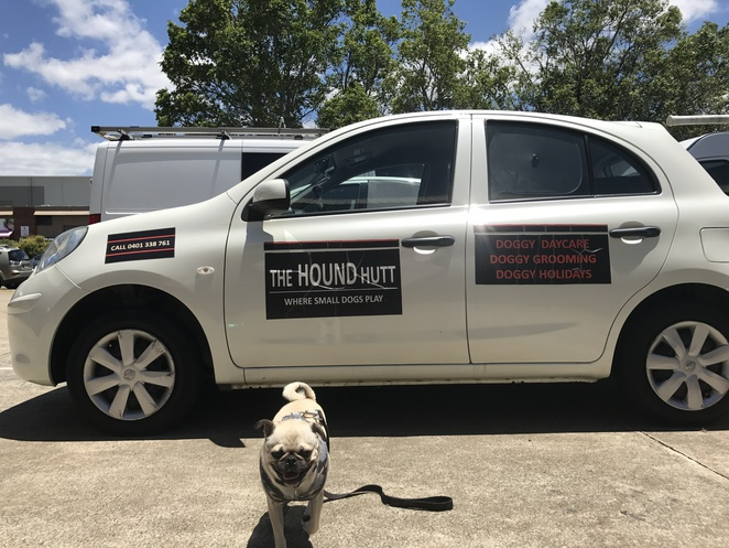 the hound hut, doggy day care, pet boarding, kennel, dog friendly, suburban pup, discuits, dog treats, pet shop, pet boutique, northside, stafford, northern suburbs, brisbane
