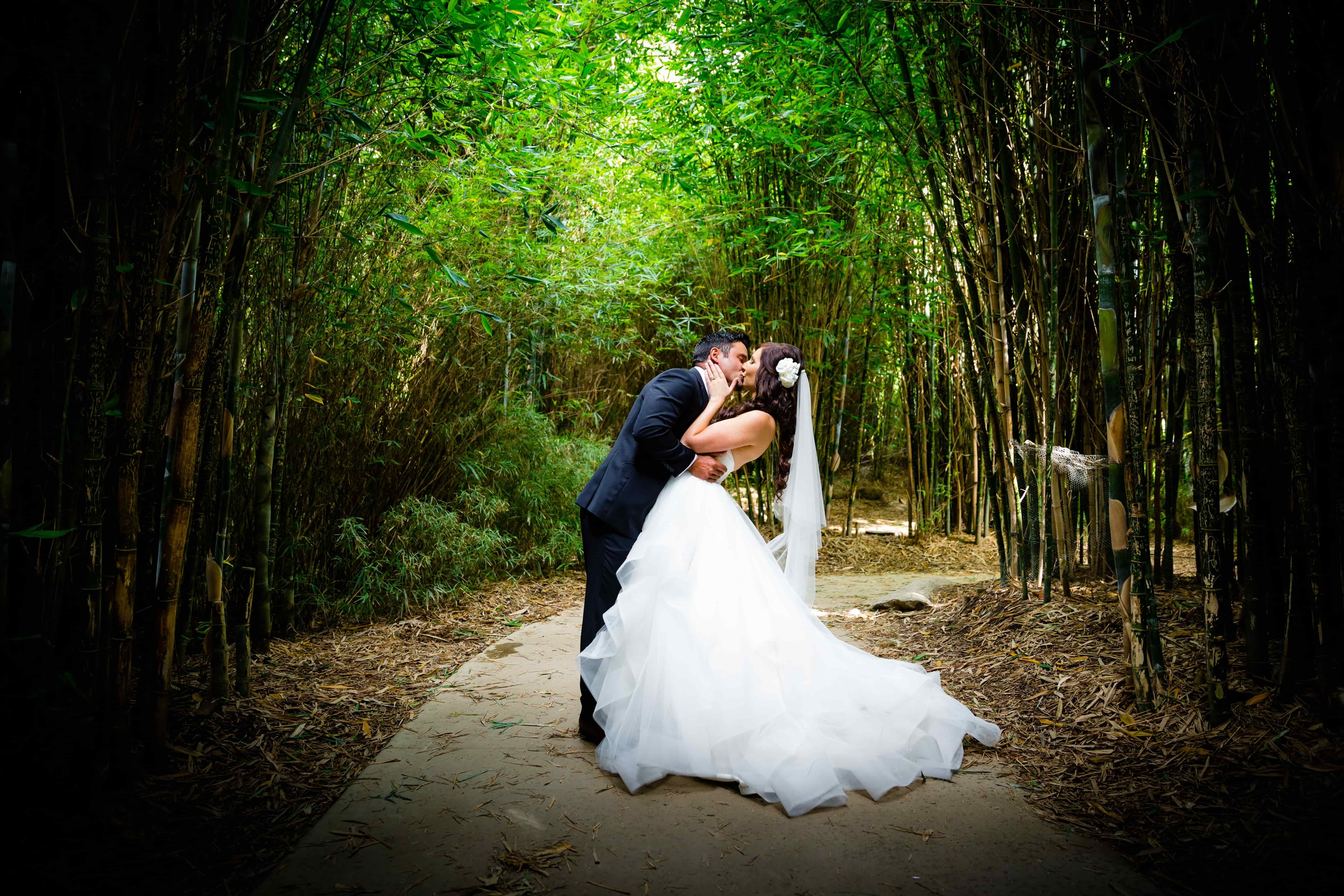 Free wedding showcase at melbourne zoo melbourne this is a special opportunity to experience a beautiful wedding ceremony at melbourne zoo and also discover its unique reception venues junglespirit Images