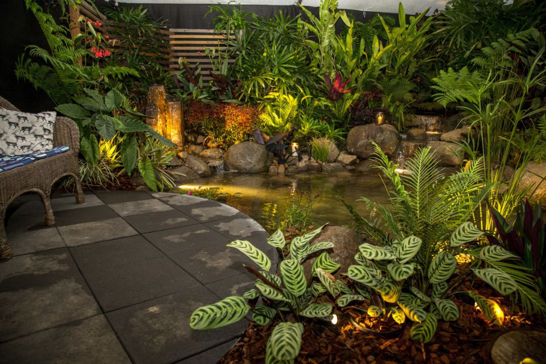 Queensland garden expo 2017 sunshine coast for Garden designs queensland