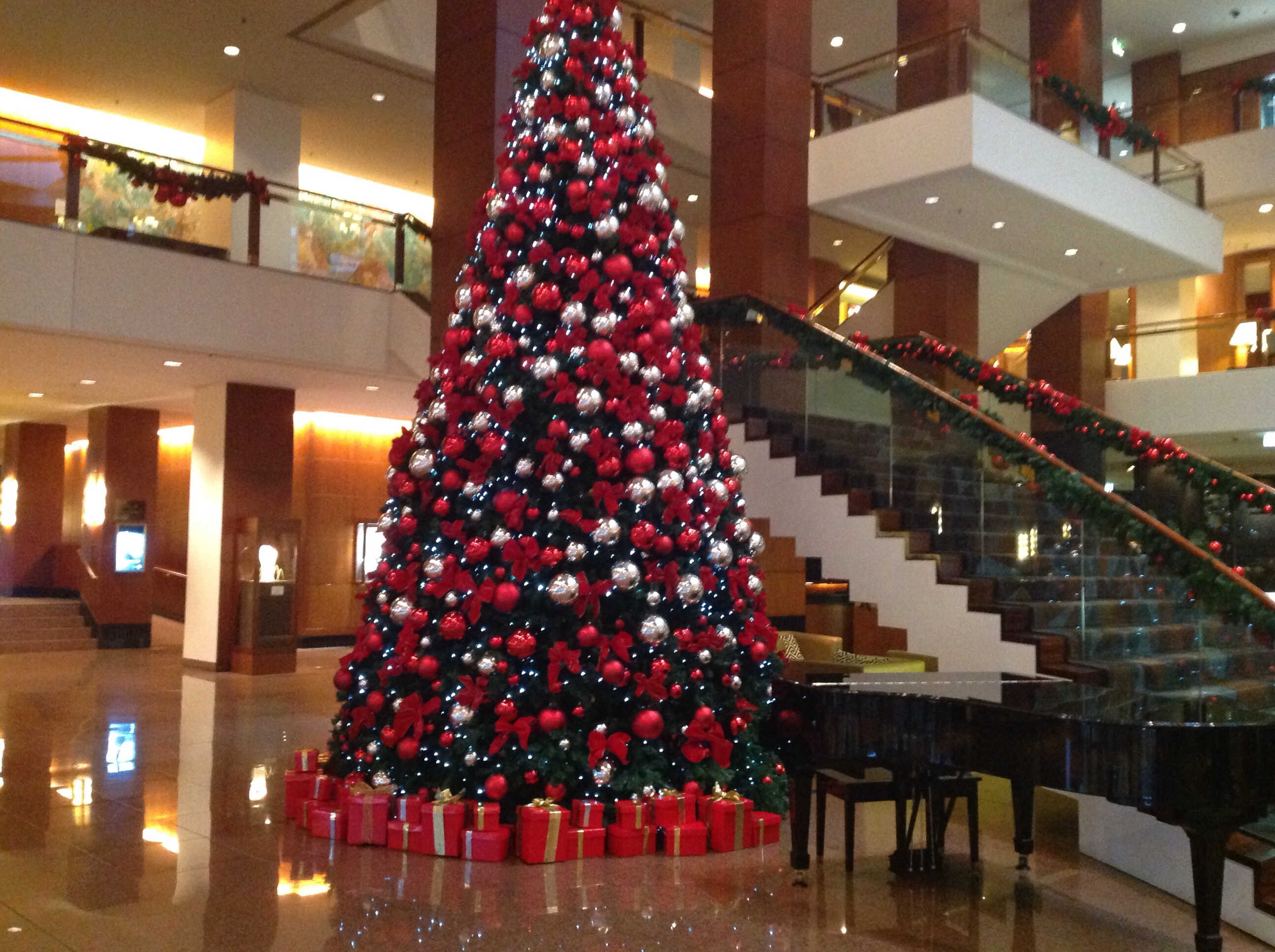 top christmas tree displays in sydney - sydney -caroleann