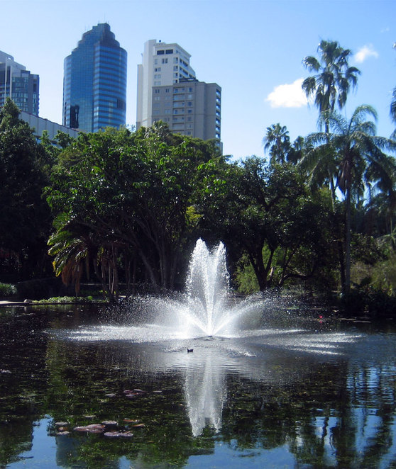 Fountain in the City Botanic Gardens