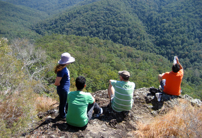 Hikers enjoying the view of Gheerulla Valley