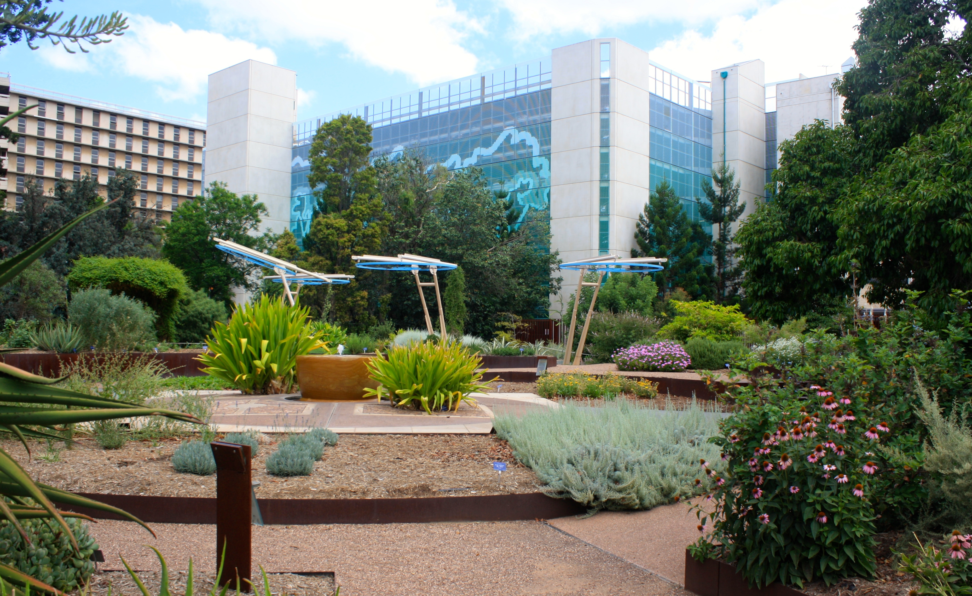 Garden of health at the adelaide botanic garden adelaide for Adelaide gardens